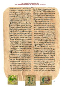 Page_de_manuscrit_vieillie_par_des_lves_et_leurs_initiales_copy